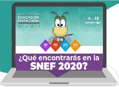 ¿Que encontras en el SNEF 2020?